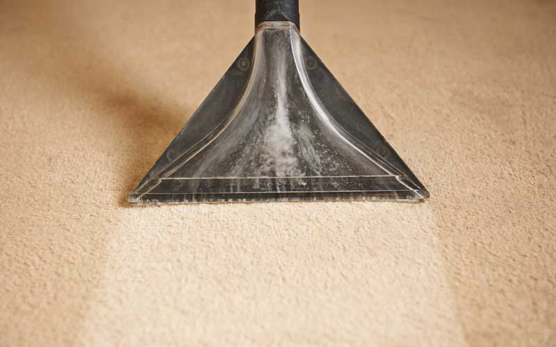 carpet-cleaning-companies-near-me